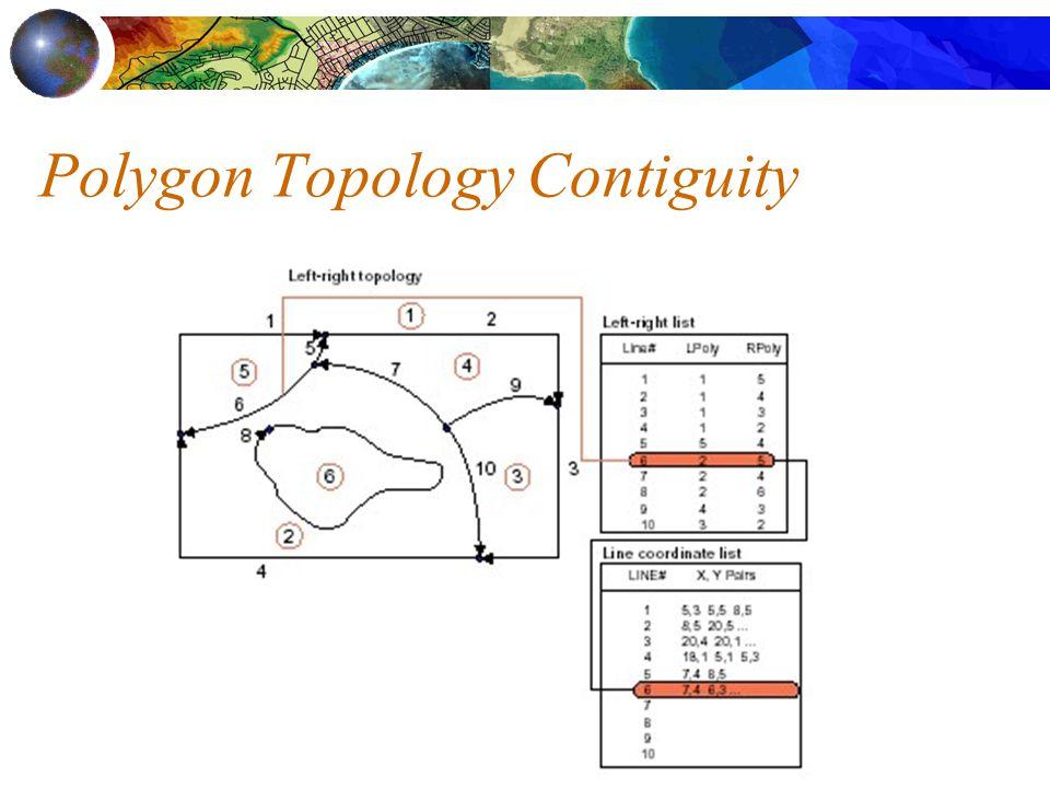 Polygon Topology Contiguity