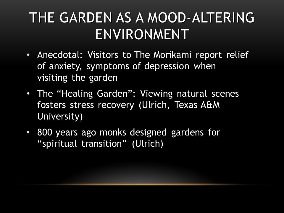 THE GARDEN AS A MOOD-ALTERING ENVIRONMENT Anecdotal: Visitors to The Morikami report relief of anxiety, symptoms of depression when visiting the garden The Healing Garden : Viewing natural scenes fosters stress recovery (Ulrich, Texas A&M University) 800 years ago monks designed gardens for spiritual transition (Ulrich)