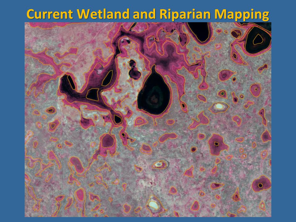 Current Wetland and Riparian Mapping