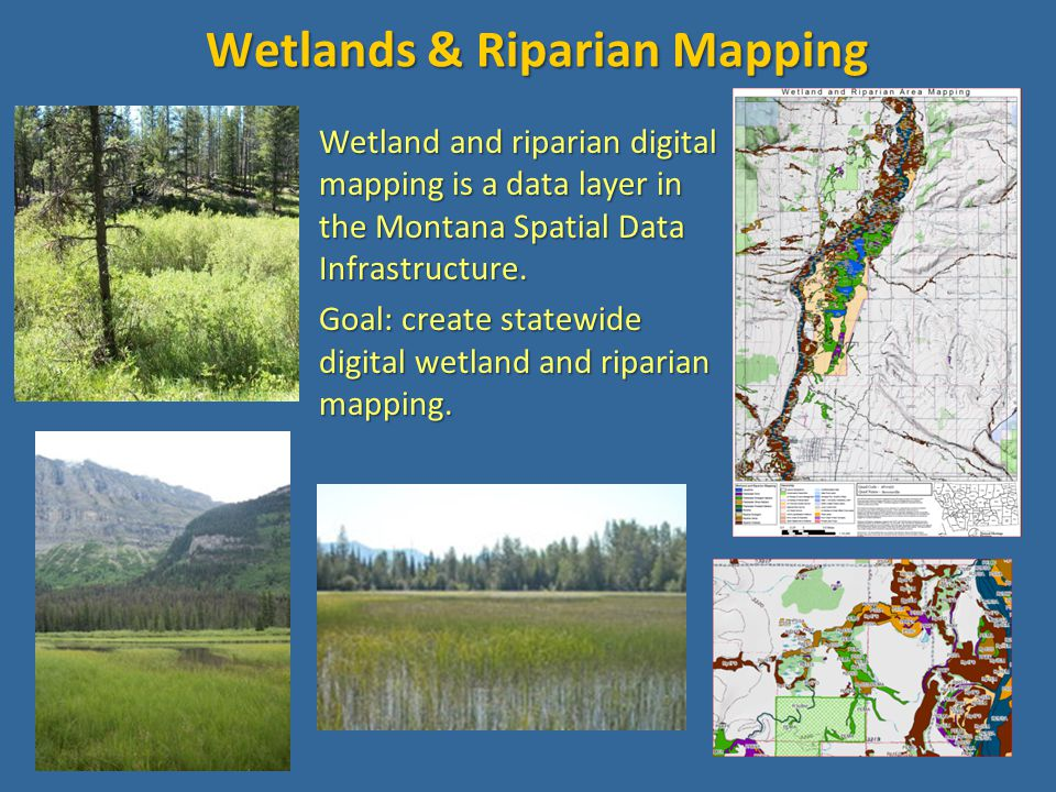 Status of Wetland Mapping in Montana circa 2006