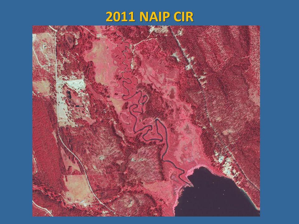 2011 NAIP CIR