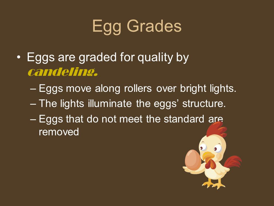 Egg Grades Eggs are graded for quality by candeling. –Eggs move along rollers over bright lights. –The lights illuminate the eggs' structure. –Eggs th
