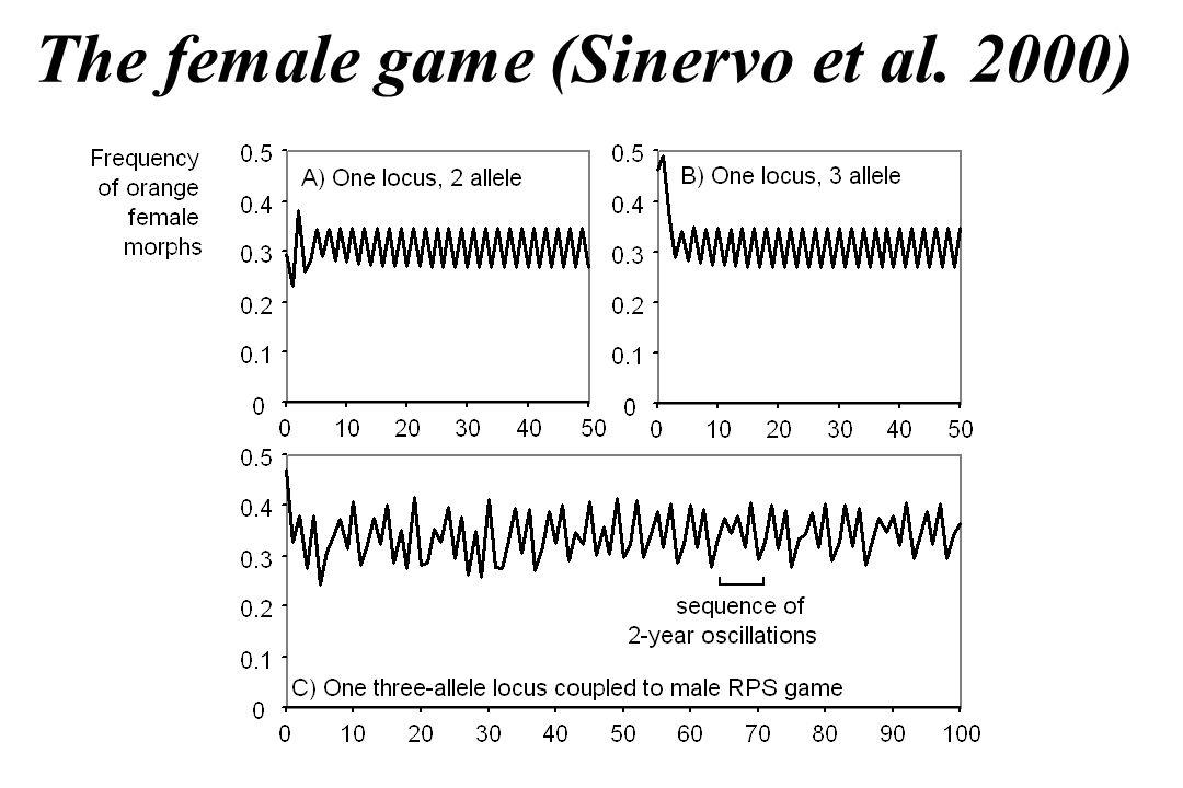 The female game (Sinervo et al. 2000)