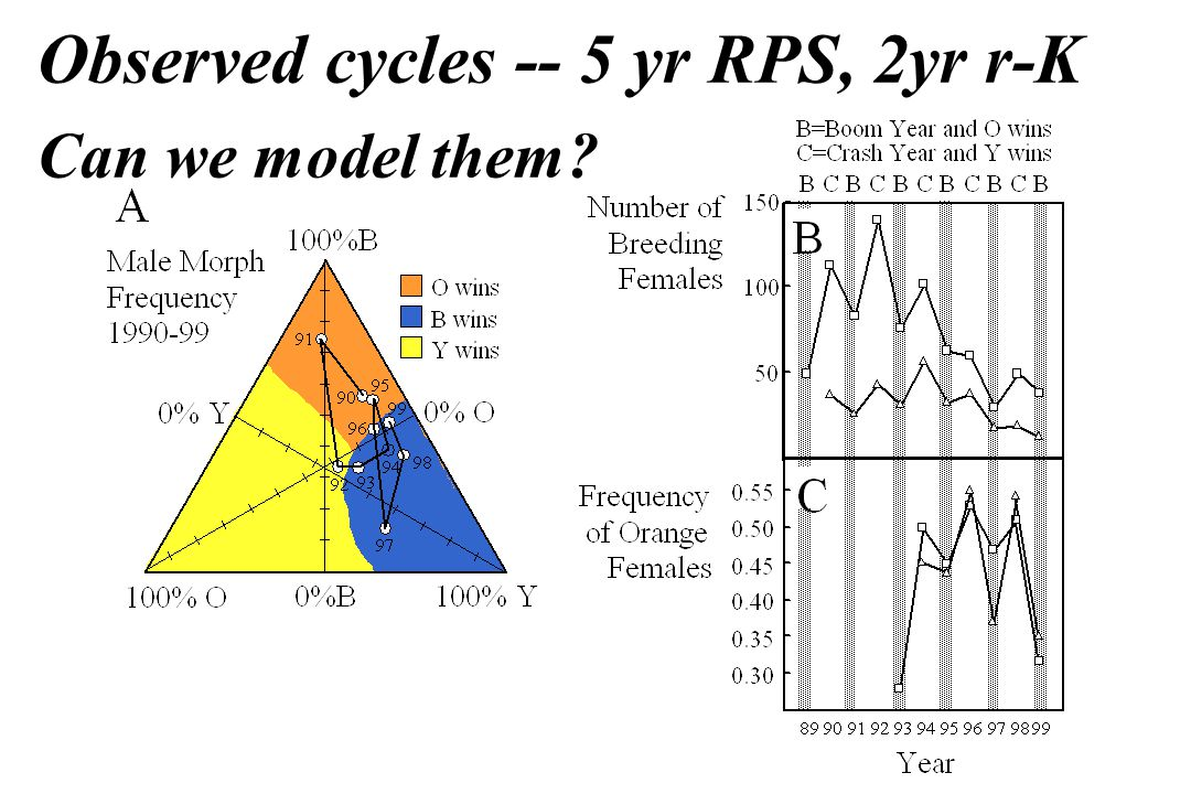 Observed cycles -- 5 yr RPS, 2yr r-K Can we model them?