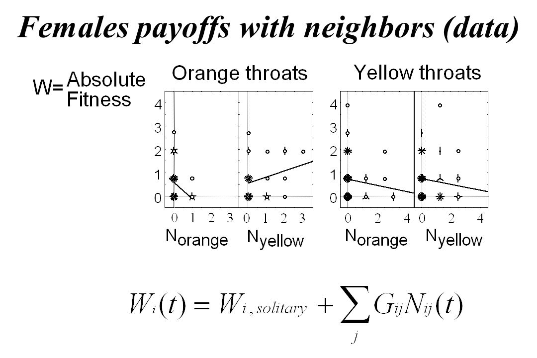 Females payoffs with neighbors (data)