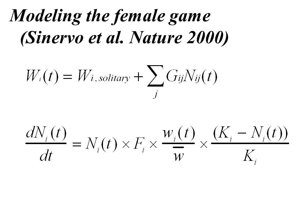 Modeling the female game (Sinervo et al. Nature 2000)