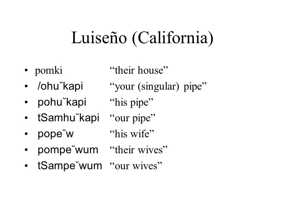 Luiseño (California) pomki their house /ohu˘kapi your (singular) pipe pohu˘kapi his pipe tSamhu˘kapi our pipe pope˘w his wife pompe˘wum their wives tSampe˘wum our wives