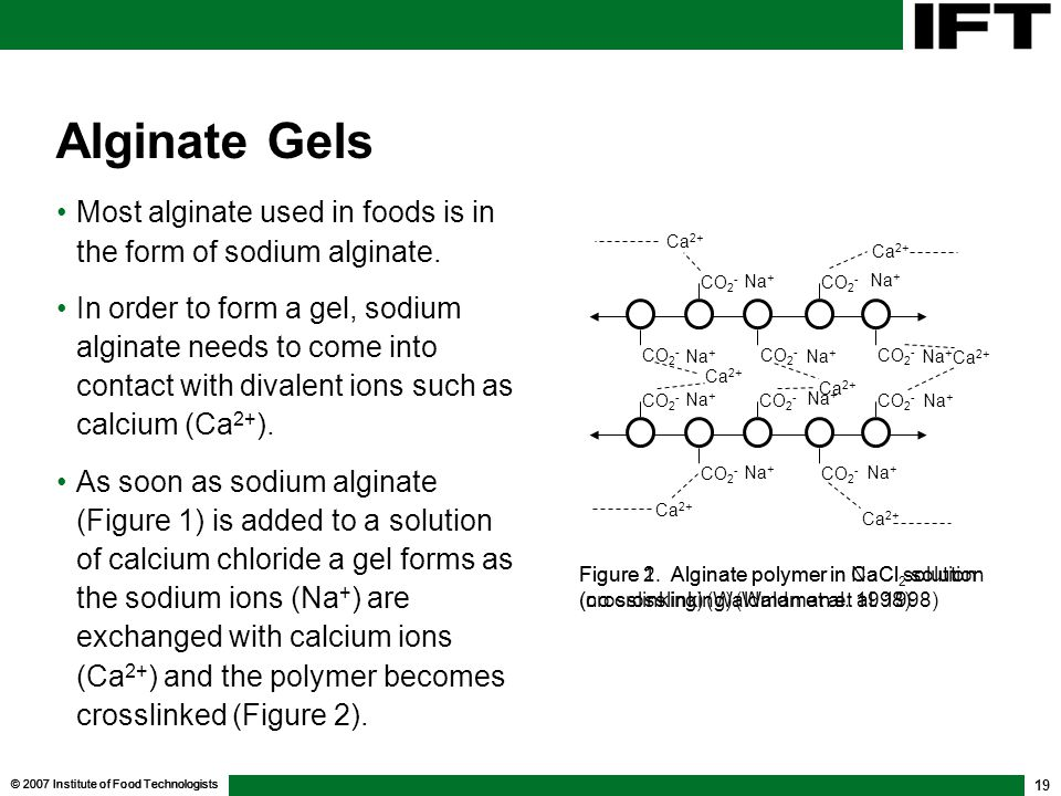 © 2007 Institute of Food Technologists 19 Alginate Gels Most alginate used in foods is in the form of sodium alginate.