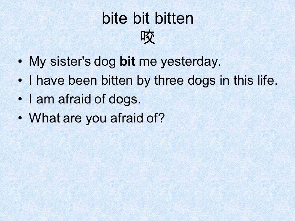 bite bit bitten 咬 My sister s dog bit me yesterday.