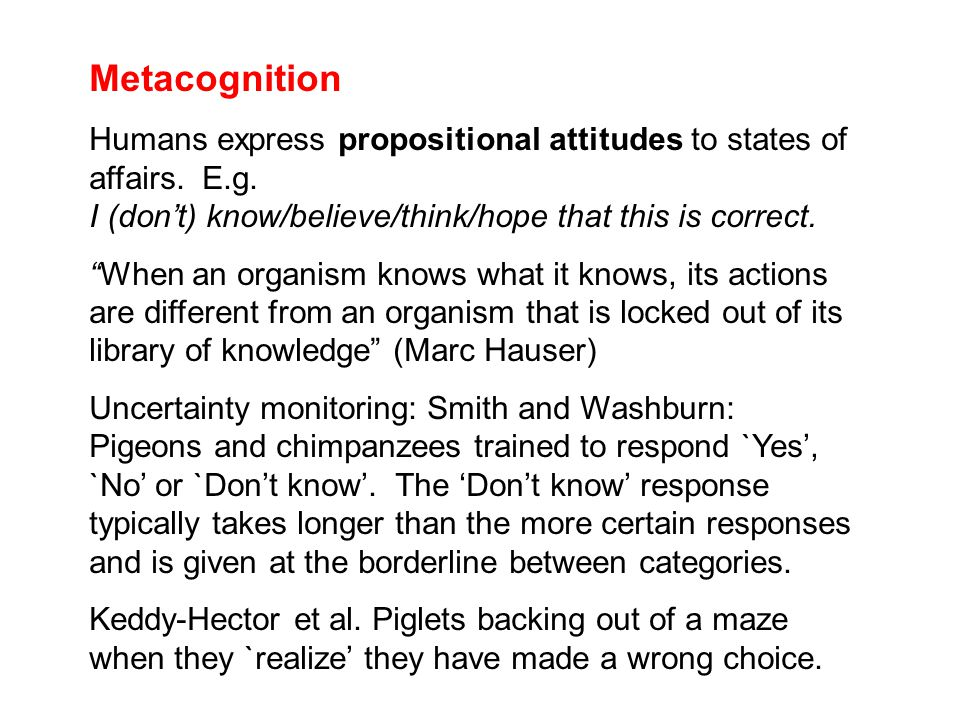 Metacognition Humans express propositional attitudes to states of affairs.