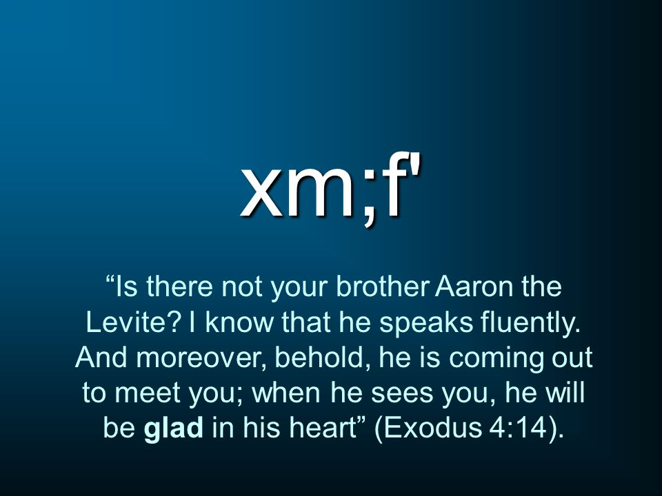 xm;f Is there not your brother Aaron the Levite.