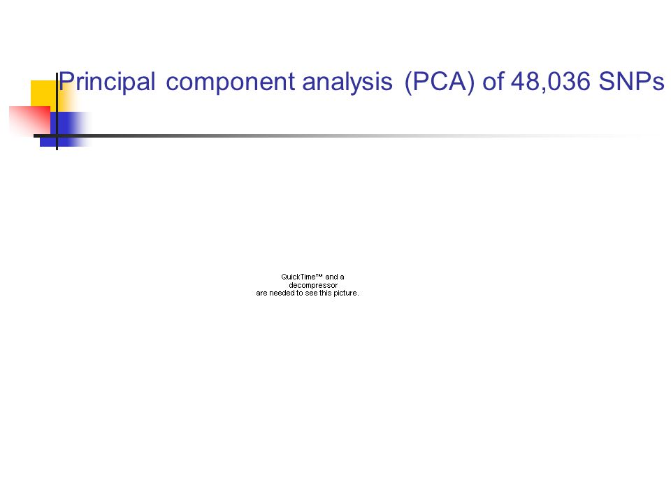 Principal component analysis (PCA) of 48,036 SNPs