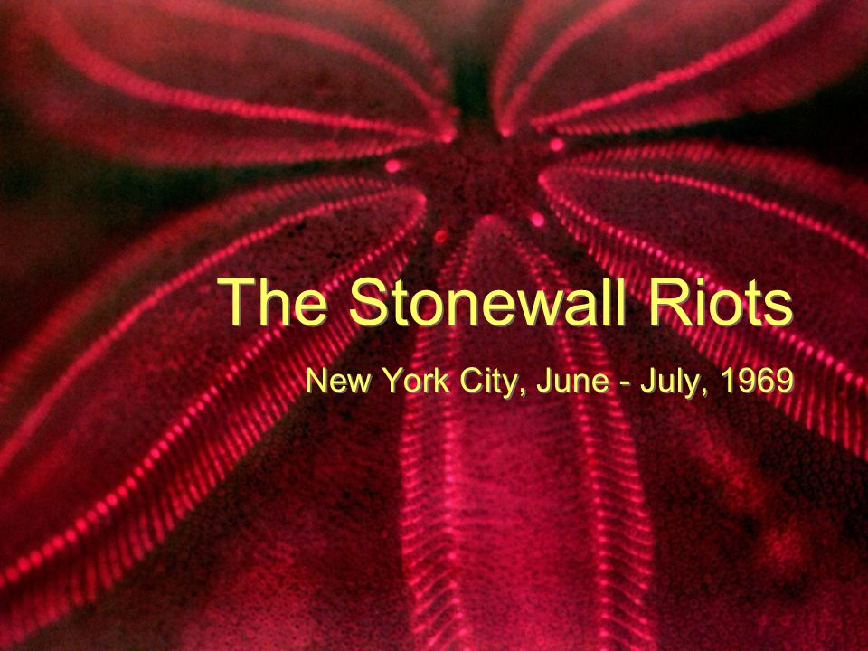 What were the Stonewall Riots.