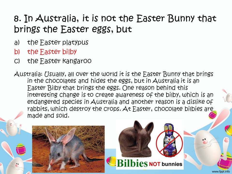 8. In Australia, it is not the Easter Bunny that brings the Easter eggs, but a)the Easter platypus b)the Easter bilby c)the Easter kangaroo Australia: