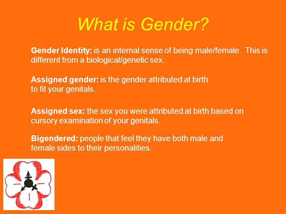 What is Gender.Gender Identity: is an internal sense of being male/female.