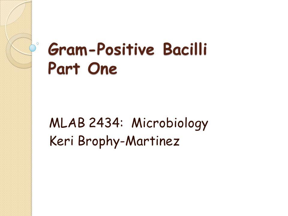 Gram-Positive Bacilli Part One MLAB 2434: Microbiology Keri Brophy-Martinez