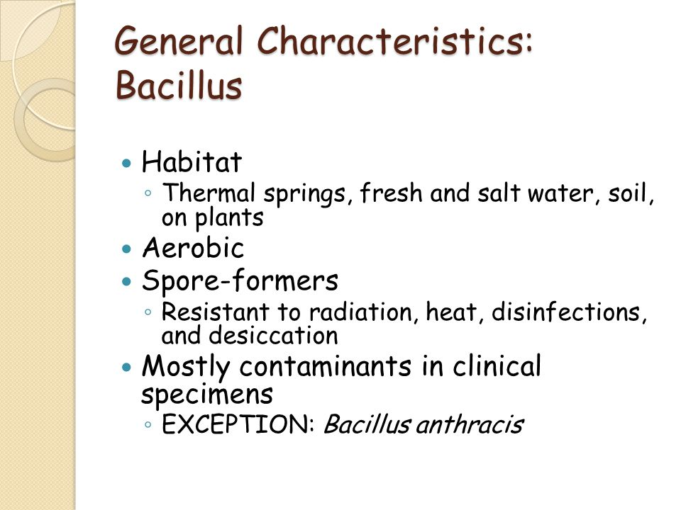 General Characteristics: Bacillus Habitat ◦ Thermal springs, fresh and salt water, soil, on plants Aerobic Spore-formers ◦ Resistant to radiation, heat, disinfections, and desiccation Mostly contaminants in clinical specimens ◦ EXCEPTION: Bacillus anthracis