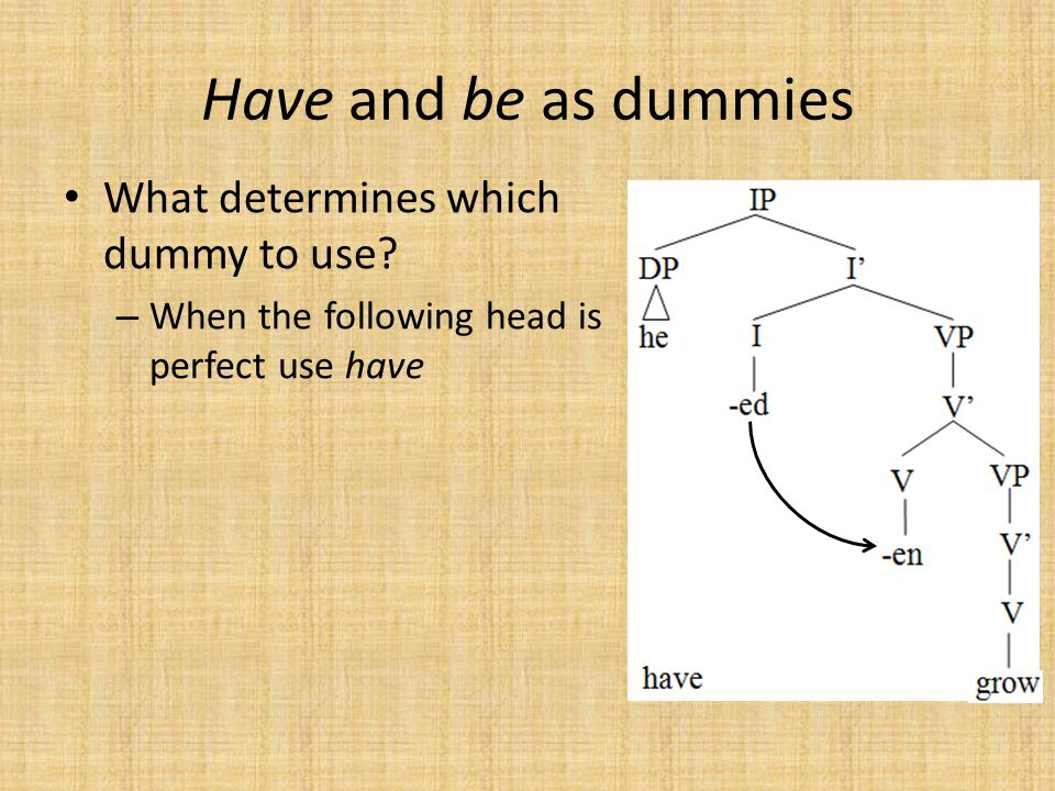 Have and be as dummies What determines which dummy to use.