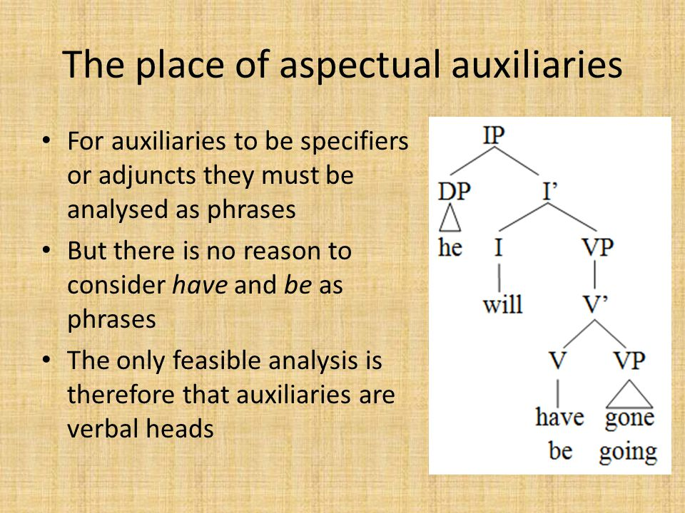 The place of aspectual auxiliaries For auxiliaries to be specifiers or adjuncts they must be analysed as phrases But there is no reason to consider have and be as phrases The only feasible analysis is therefore that auxiliaries are verbal heads