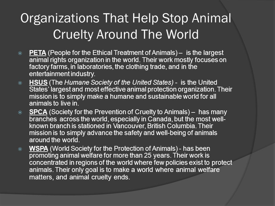 Organizations That Help Stop Animal Cruelty Around The World  PETA (People for the Ethical Treatment of Animals) – is the largest animal rights organization in the world.