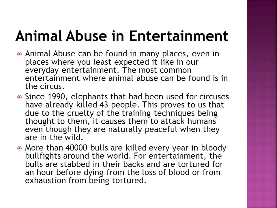 Animal Abuse can be found in many places, even in places where you least expected it like in our everyday entertainment.