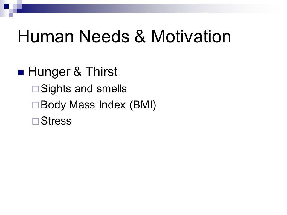 Human Needs & Motivation Hunger & Thirst  Sights and smells  Body Mass Index (BMI)  Stress