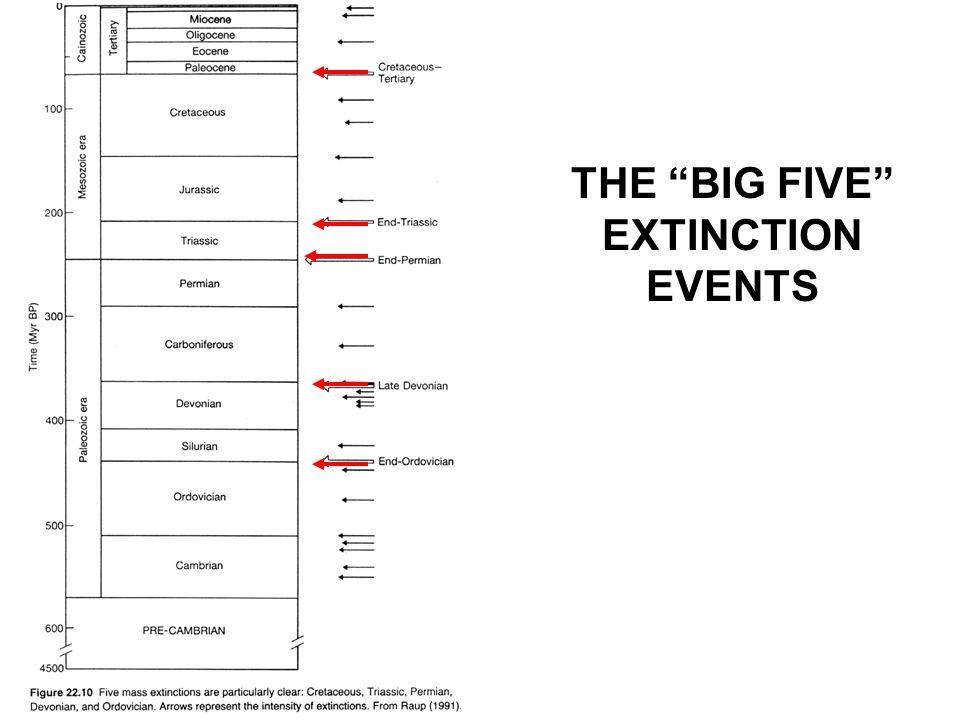 THE BIG FIVE EXTINCTION EVENTS