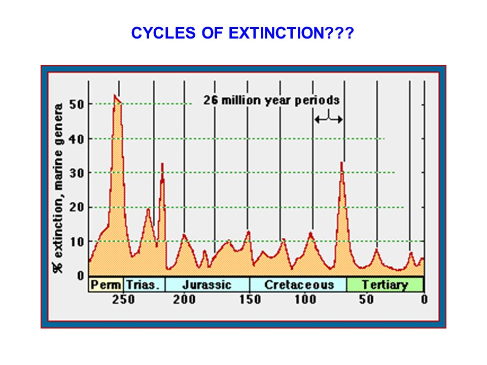 CYCLES OF EXTINCTION