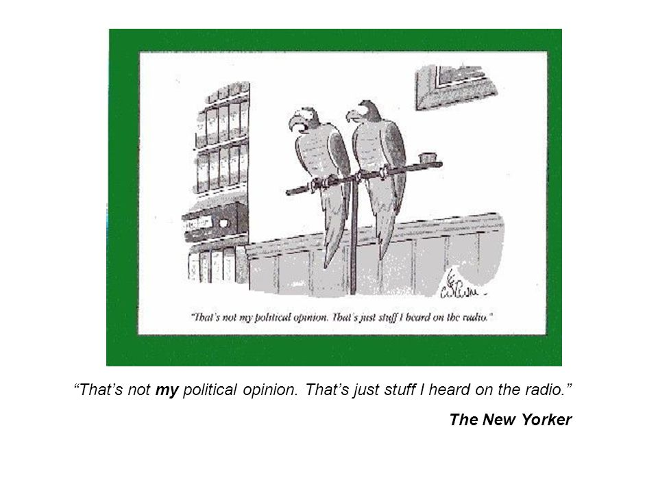 That's not my political opinion. That's just stuff I heard on the radio. The New Yorker
