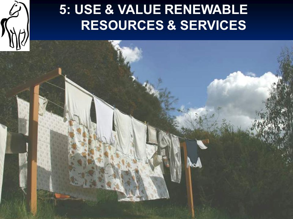 5: USE & VALUE RENEWABLE RESOURCES & SERVICES