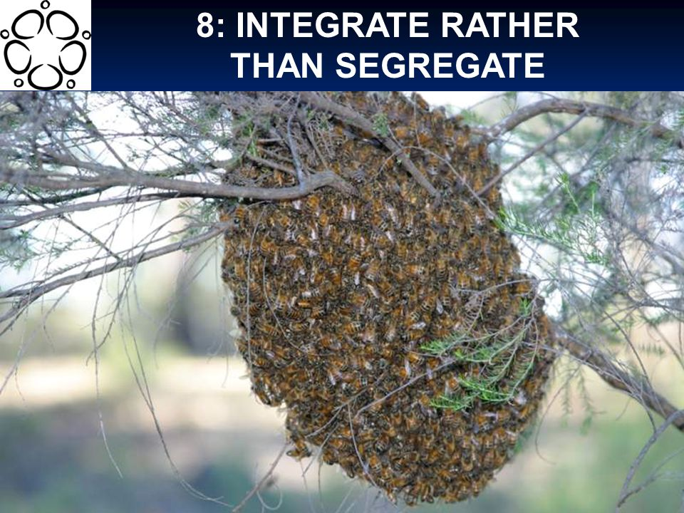 8: INTEGRATE RATHER THAN SEGREGATE