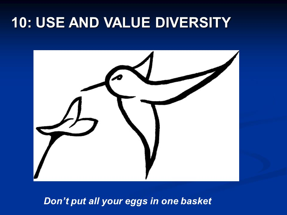 Don't put all your eggs in one basket 10: USE AND VALUE DIVERSITY 10: USE AND VALUE DIVERSITY