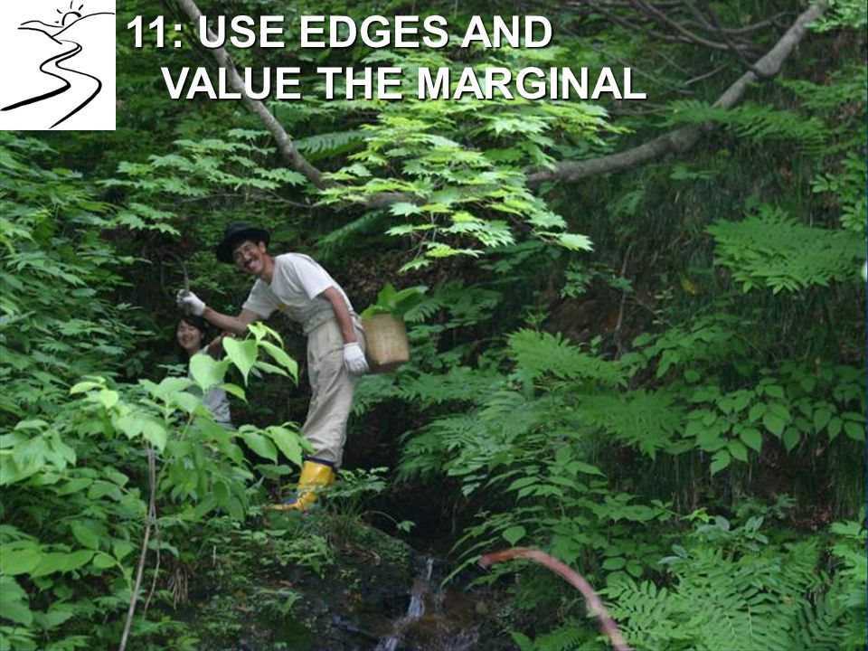 11: USE EDGES AND VALUE THE MARGINAL VALUE THE MARGINAL