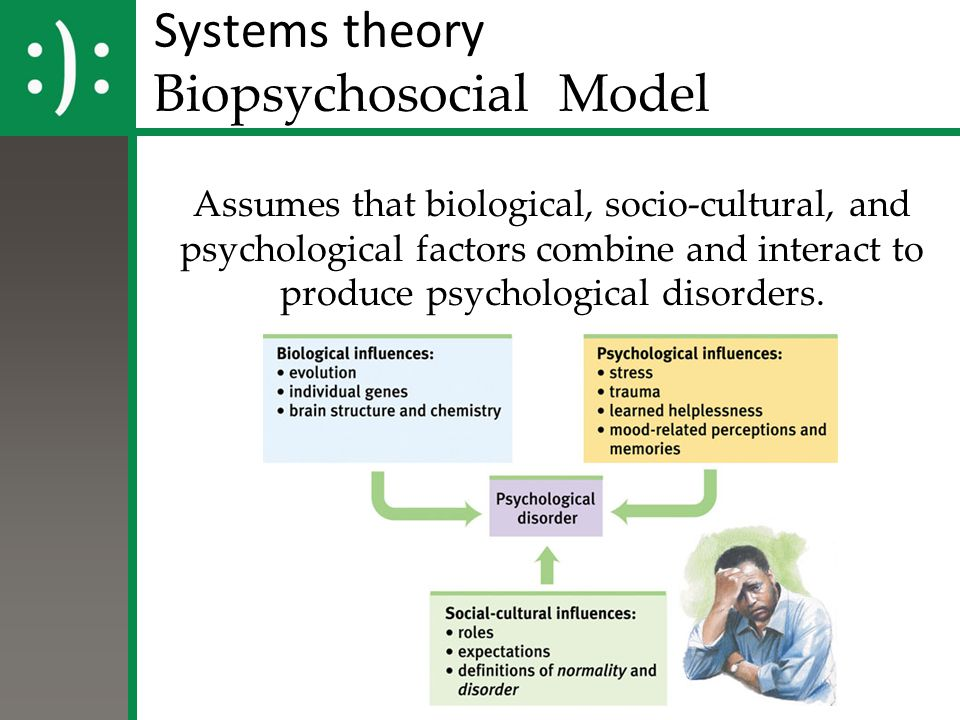 Systems theory Biopsychosocial Model Assumes that biological, socio-cultural, and psychological factors combine and interact to produce psychological