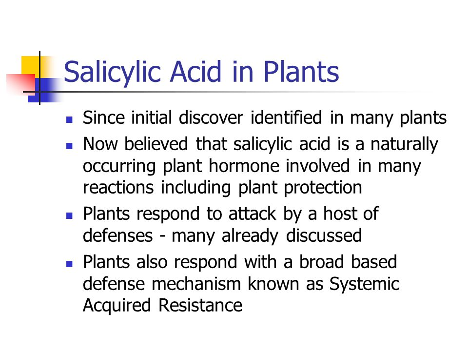 Salicylic Acid in Plants Since initial discover identified in many plants Now believed that salicylic acid is a naturally occurring plant hormone invo