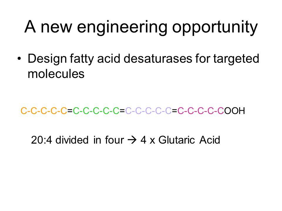 Fatty acids occurring in nature.