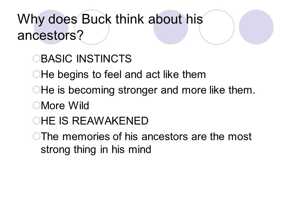 Why does Buck think about his ancestors.