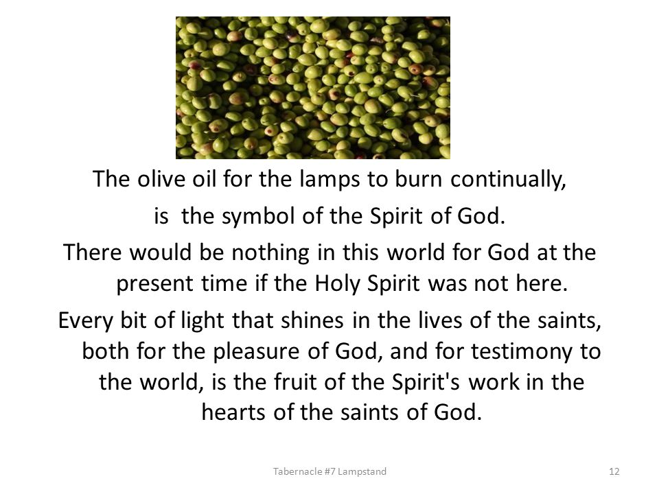 The olive oil for the lamps to burn continually, is the symbol of the Spirit of God.