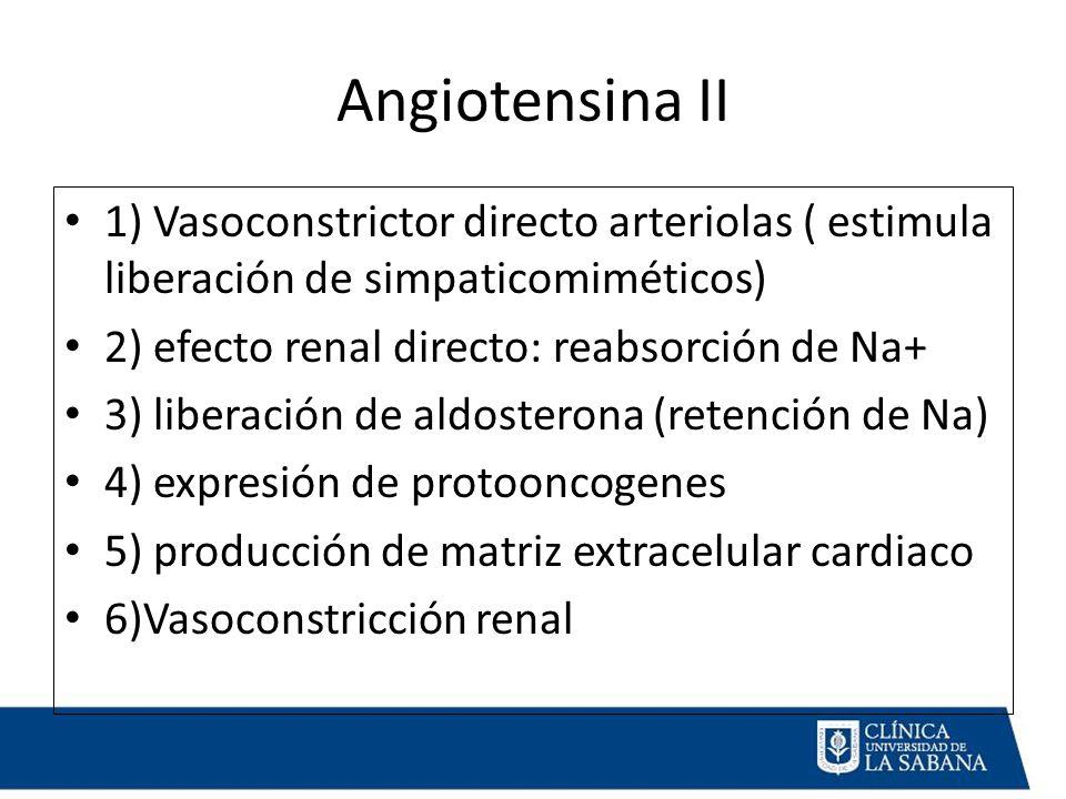 Angiotensina II 1) Vasoconstrictor directo arteriolas ( estimula liberación de simpaticomiméticos) 2) efecto renal directo: reabsorción de Na+ 3) liberación de aldosterona (retención de Na) 4) expresión de protooncogenes 5) producción de matriz extracelular cardiaco 6)Vasoconstricción renal