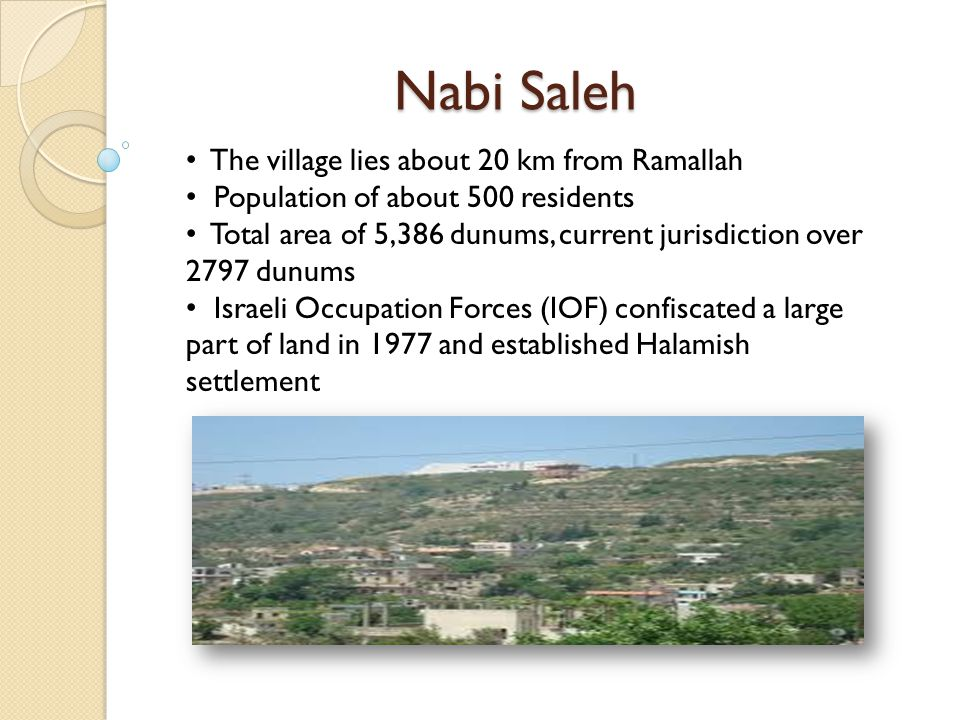 Nabi Saleh The village lies about 20 km from Ramallah Population of about 500 residents Total area of 5,386 dunums, current jurisdiction over 2797 dunums Israeli Occupation Forces (IOF) confiscated a large part of land in 1977 and established Halamish settlement