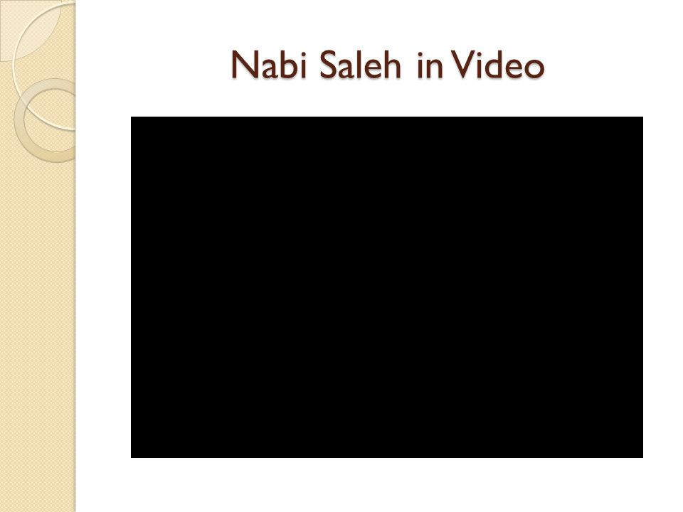 Nabi Saleh in Video