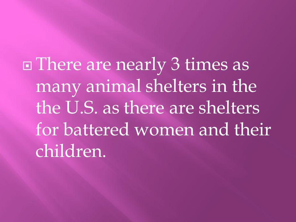TThere are nearly 3 times as many animal shelters in the the U.S.