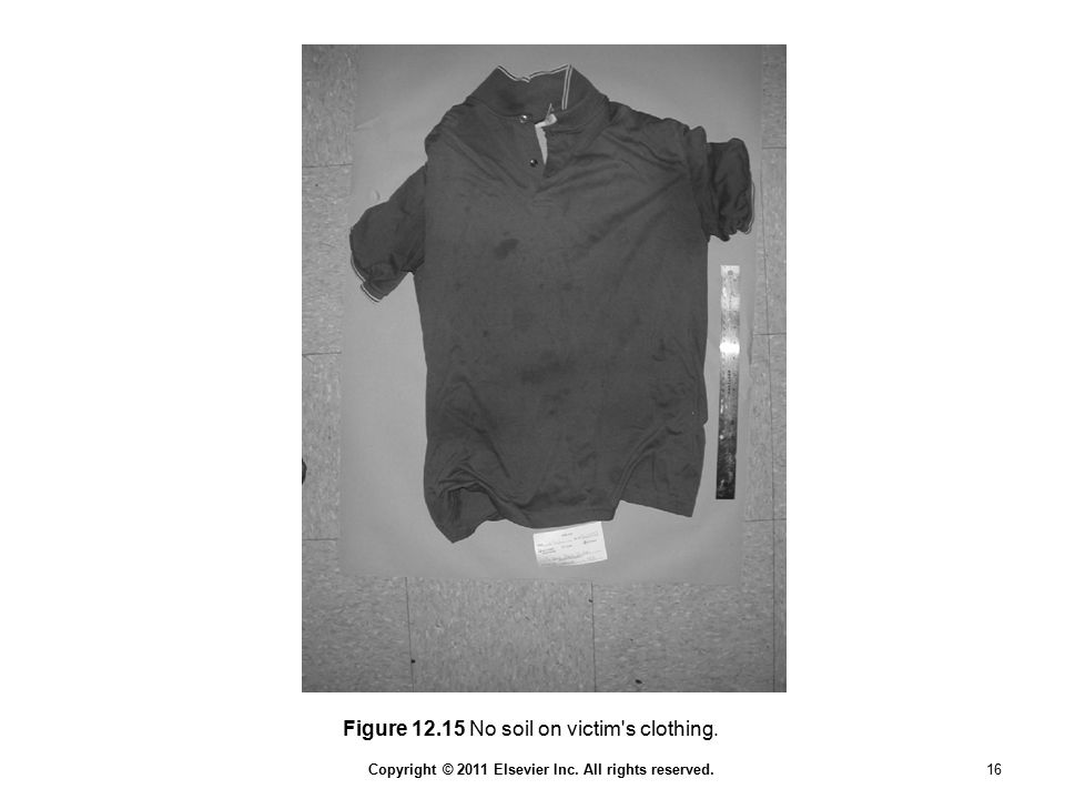 Copyright © 2011 Elsevier Inc. All rights reserved. 16 Figure 12.15 No soil on victim's clothing.