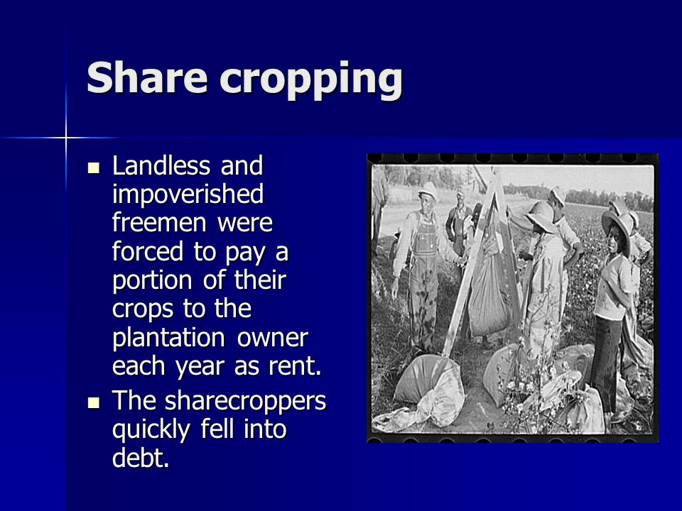 Share cropping Landless and impoverished freemen were forced to pay a portion of their crops to the plantation owner each year as rent.