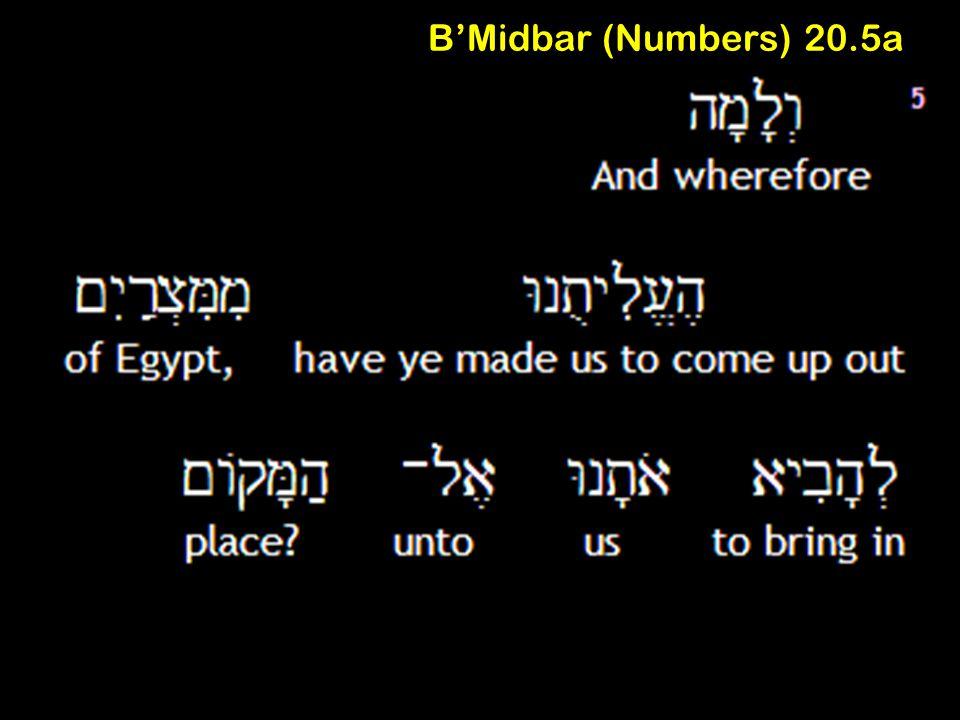 B'Midbar (Numbers) 20.5a