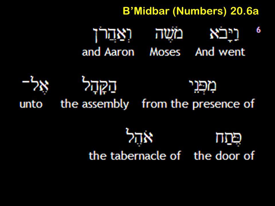 B'Midbar (Numbers) 20.6a