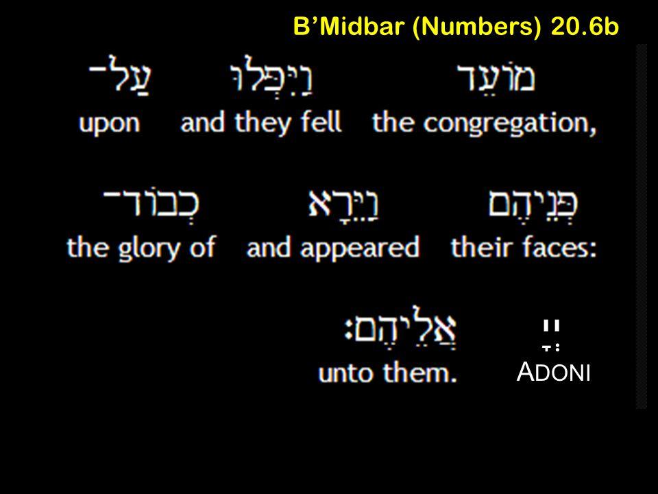 B'Midbar (Numbers) 20.6b A DONI יְיָ