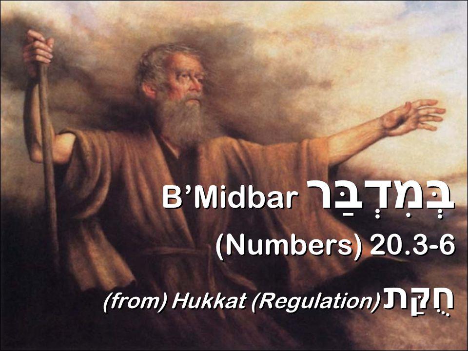B'Midbar (Numbers) 20.3 יְיָ A DONI!