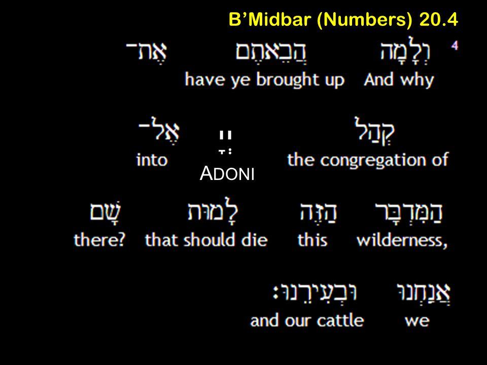 B'Midbar (Numbers) 20.4 יְיָ A DONI