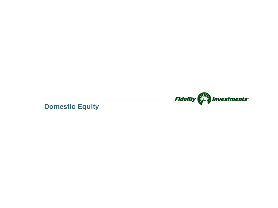 Domestic Equity